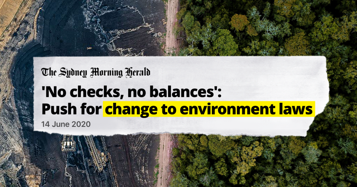 Image of a coal mine split with a rainforest, with SMH headline tear out reading: ''No checks, no balances': Push for change to environment laws'